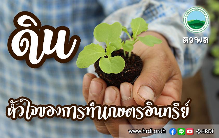 ดิน หัวใจของการทำเกษตรอินทรีย์