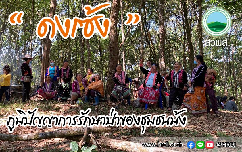 """""""ดงเซ้ง"""" ภูมิปัญญาการรักษาป่าของชุมชนม้ง"""