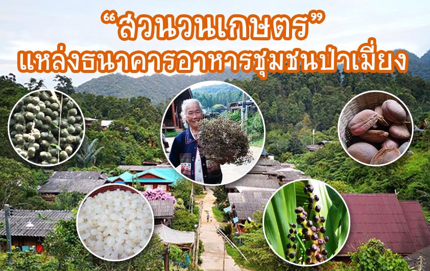 """""""สวนวนเกษตร"""" แหล่งธนาคารอาหารชุมชนป่าเมี่ยง"""
