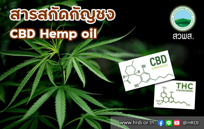 สารสกัดกัญชง (CBD Hemp oil)