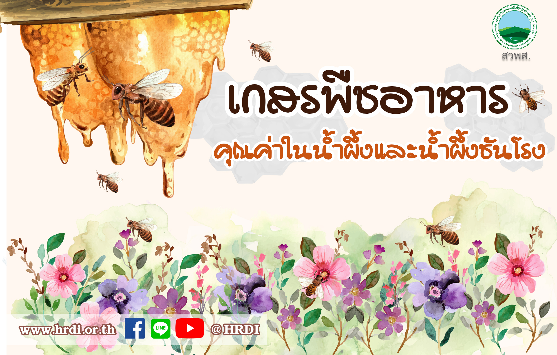 เกสรพืชอาหาร..คุณค่าในน้ำผึ้งและน้ำผึ้งชันโรง